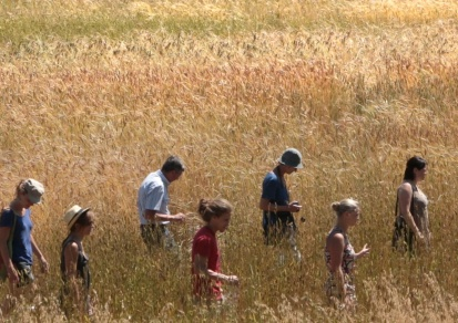 Gens des blés