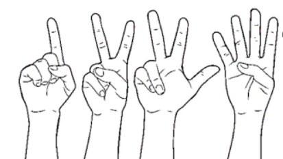 Sur mes doigts